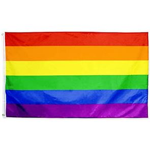 Rainbow (Pride) Display Flag - Polyester - 5 foot x 3 foot - (1.5m x 91cms) - with two eyelets